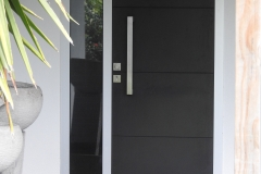Entry Door 3HV Dark colour