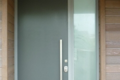Entry Door flush panel oplaucent glass
